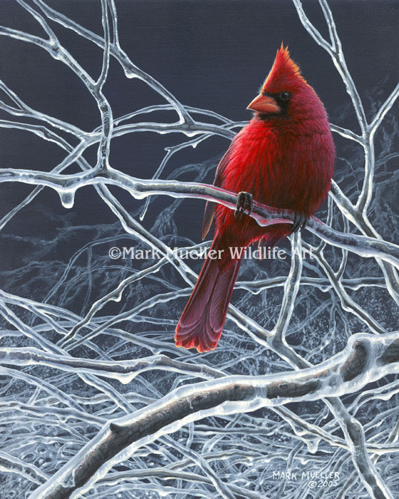 Cardinal painting by Mark Mueller