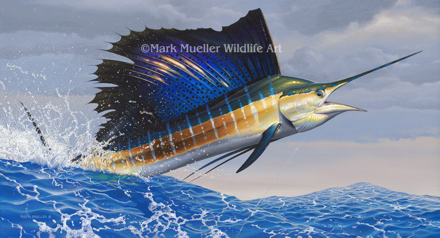 Sailfish painting by Mark Mueller